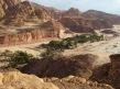 Beduin oasis and garden